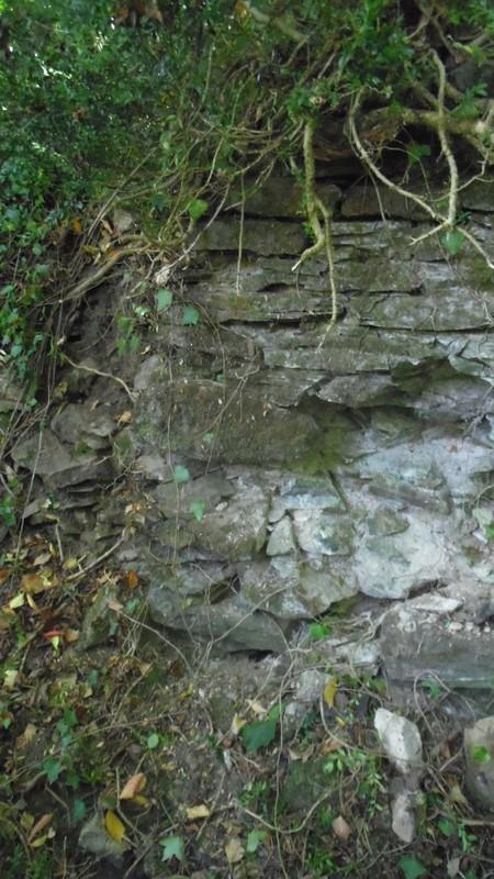 Anciennes fondations du moulin à eau